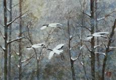 Vol-silencieux-dans-la-forêt-enneigée-L-C.Aubecq-